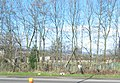 Allotment Gardens beside the M4 - geograph.org.uk - 348038.jpg