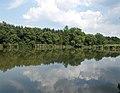 Alsó lake, 2018 Majkpuszta.jpg