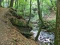 Alyth Burn, Den o' Alyth - geograph.org.uk - 1540182.jpg