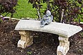 Angel on a Bench (4536729566).jpg
