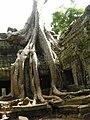 Angkor-112179.jpg