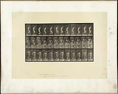 Animal locomotion. Plate 186 (Boston Public Library).jpg