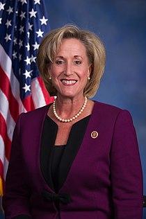 Ann Wagner 113th Congress official photo.jpg