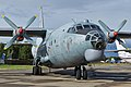 Antonov An-12BK 'RF-93950 - 14 red' (37139708202).jpg