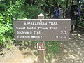 Appalachian Trail at Newfound Gap IMG 5137.JPG