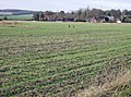 Arable land near Bentley - geograph.org.uk - 630461.jpg