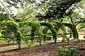 Arch of San Anton Gardens.jpg