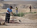 Archaeological Diggers - Palace of Darius the Great - Shush - Southwestern Iran (7423689140) (2).jpg