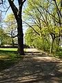 Arkadijas parks - panoramio (1).jpg