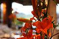 Arreglo floral - boda en La Toscana.jpg