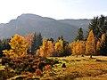 Autumn colour at Invergeldie - geograph.org.uk - 1034313.jpg