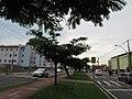 Av. Dr. Abrahão Brickmann, Franca (SP), Brasil, 12012019.jpg