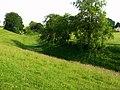 Avebury Henge - geograph.org.uk - 841174.jpg