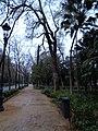 Avenida de Pizarro 3.JPG