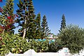 Ayia Napa, Cyprus - panoramio (143).jpg
