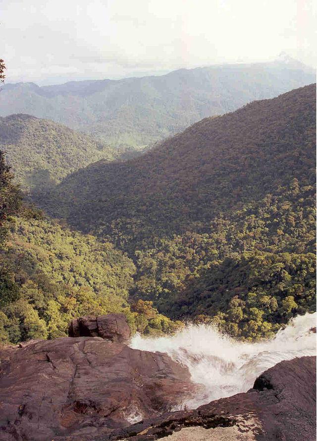 Bach Ma-Parque Nacional
