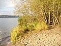 Badestelle Unter dem Havelberg (Bathing Beach Below the Havelberg) - geo.hlipp.de - 30283.jpg