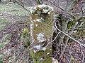 Ballochmyle Estate, old slip gate, Mauchline, Scotland.jpg