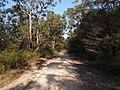 Bambara road - panoramio (2).jpg