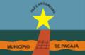 Bandeira Pacaja.png
