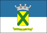 Bandeira Santo André.png