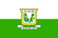 Bandeira de Ipueira (RN).png