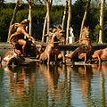 Bassin d'Apollon, parc du château, Versailles.JPG