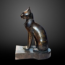 Maca od crnog mesa