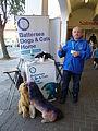 Battersea Dogs & Cats Home, New Barnet.JPG