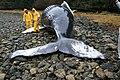 Beached whale.jpg