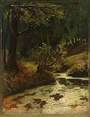 Brook in the Woods near Oosterbeek