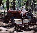 Beekeepertractor.jpg