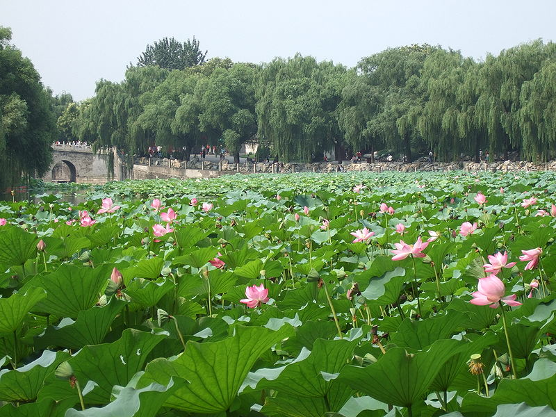 File:Beihaiparkpic6.jpg