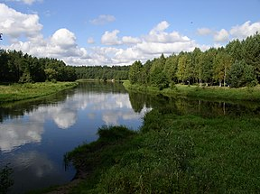 Belarus-Junction of Viliya and Narach Rivers-3.jpg