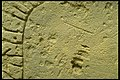 Berezanj (kopia av runstensfragment); Ukraina - KMB - 16000300015154.jpg