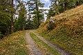 Bergtocht van Vens naar Bettex in Valle d'Aosta (Italië). Bergpad naar Bettex.jpg