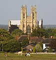 Beverley Minster from the Westwood - geograph.org.uk - 2433098.jpg
