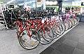 Bicycles on sale.jpg