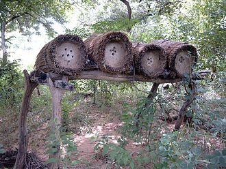 Agriculture in Burkina Faso - Beekeeping is part of the agricultural tradition of Burkina Faso.