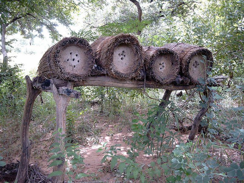 Fichier:Bienenstoecke Fada Bild1067.jpg