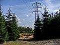 Birmingham - panoramio (39).jpg