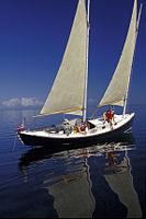 Biscayne National Park V-egret sailing.jpg