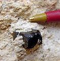 Bixbyite - USGS Mineral Specimens 151.jpg