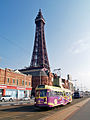 Blackpool Transport Services Limited car number 630 (1).jpg