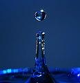 Blue drop 2 (2240087999).jpg
