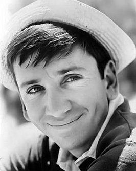 Imdb Gilligan S Island Butterfly Catcher