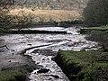 Bodmin Pill, A Muddy Creek - geograph.org.uk - 109877.jpg