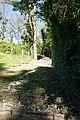 Bons-en-Chablais (51211466016).jpg