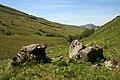 Boulders in Glen Liver - geograph.org.uk - 1418983.jpg