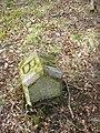 Boundary Marker Stone^ - geograph.org.uk - 771626.jpg